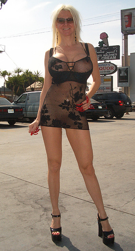 1807579067 8e78222469 Sheer Dress Public Wife